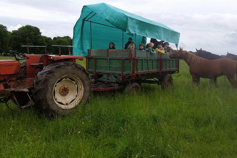 Ballade en tracteur au Domaine de Canon