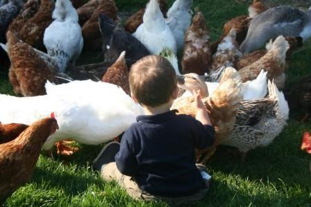 Les enfants adorent le contact avec nos animaux...