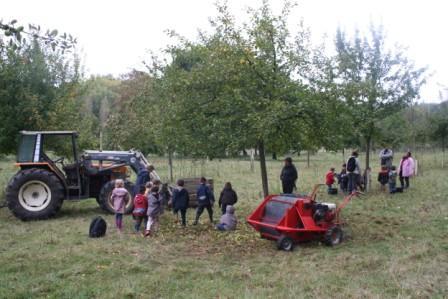 Ramassage des pommes au Domaine de Canon